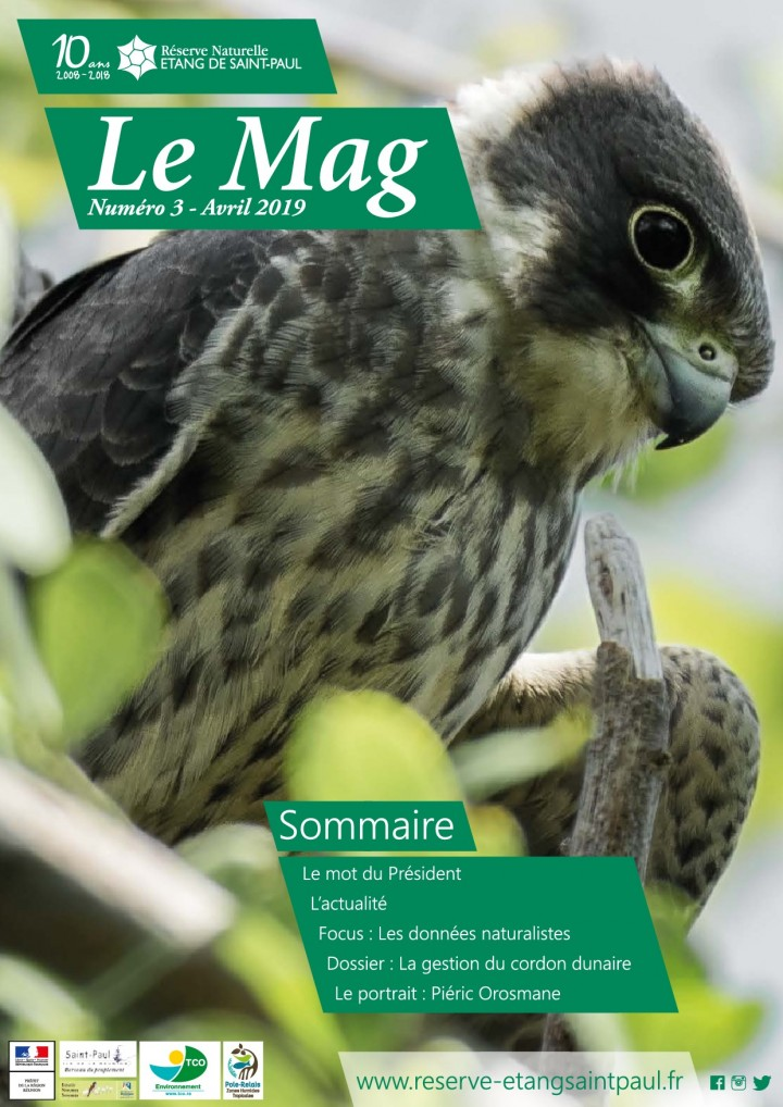 Mag 3 - Avril 2019
