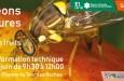 Matinée d'informations ** Lutte contre les mouches des fruits