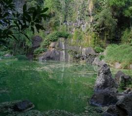 Le site de Bassin Vital - Visite pédestre
