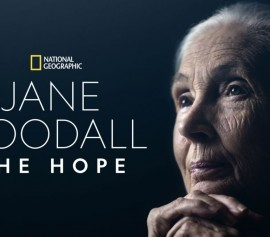 IMN 2021 - Jane Goodall, The Hope + visioconférence avec Jane Goodall