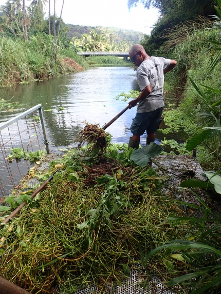 Des travaux pour un étang plus vivant !